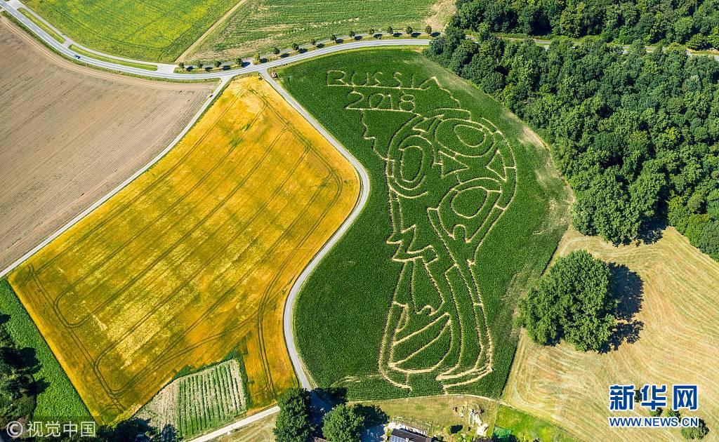 壮观!德国现世界杯Logo玉米迷宫(组图)