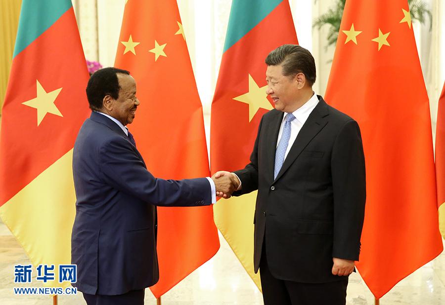 习近平会见喀麦隆总统比亚