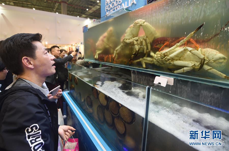(新华全媒头条·聚焦进口博览会·图文互动)(19)海纳百川 利达天下——首届中国国际进口博览会巡礼