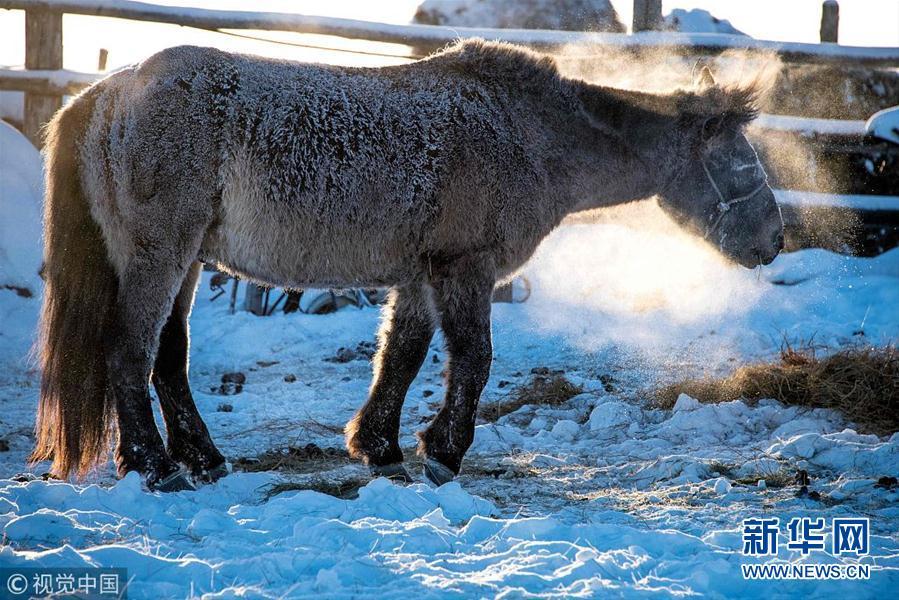 感受俄罗斯寒冷城市雅库茨克 气温降至零下41度