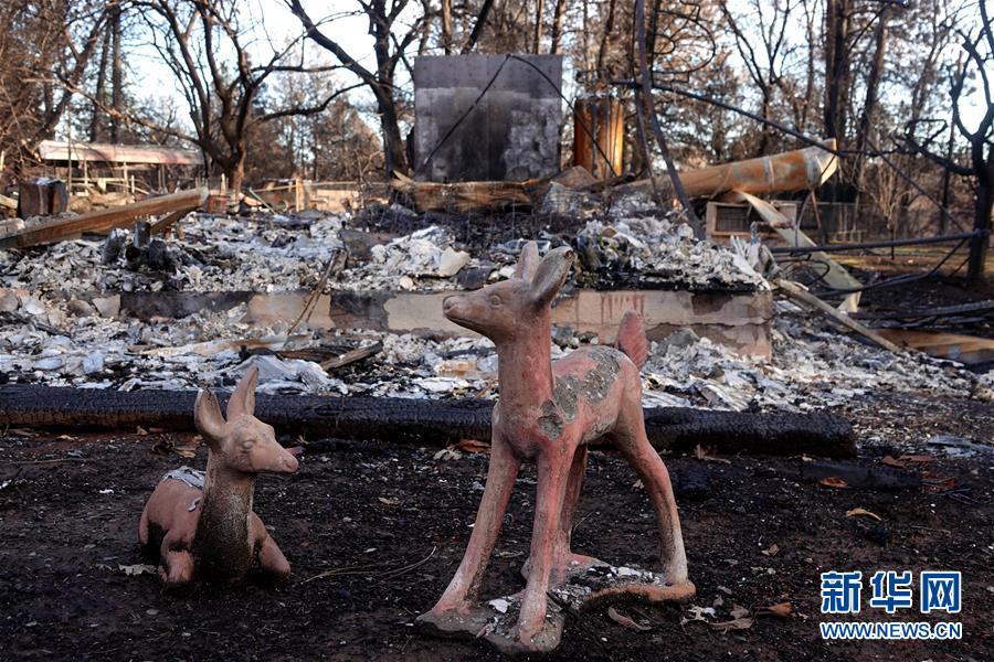 (國際·圖文互動)(6)一場山火,讓這個冬天格外冷——探訪美國加州山火災區