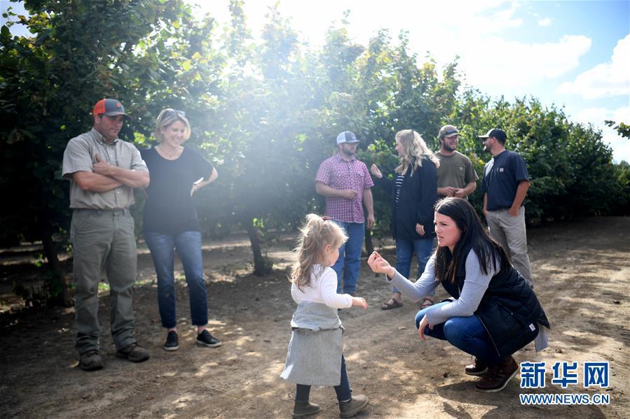 """(國際·圖文互動)(1)""""這些樹寄托著我們對中國市場的信心""""——探訪美俄勒岡州榛子果農"""