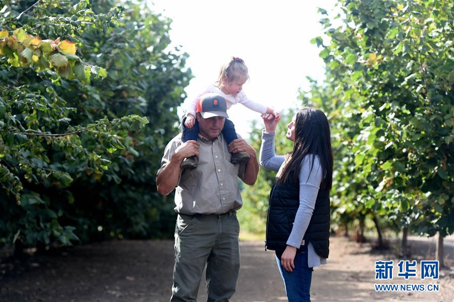 """(國際·圖文互動)(2)""""這些樹寄托著我們對中國市場的信心""""——探訪美俄勒岡州榛子果農"""