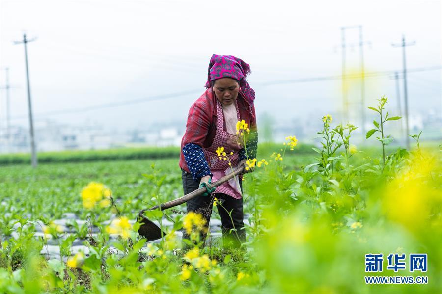 """(社会)(1)贵州启动脱贫攻坚""""春季攻势"""""""
