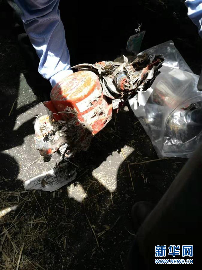 (国际)埃塞俄比亚失事客机黑匣子被找到