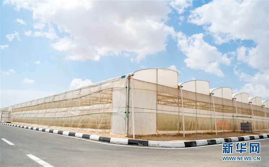 """(國際·""""一帶一路""""高峰論壇·圖文互動)(1)荒漠正在成為瓜果飄香的綠洲——記中國國機重工埃及現代農業溫室項目"""