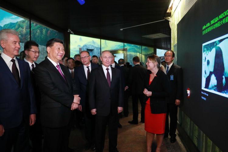 习近平和普京把中俄关系领进新时代