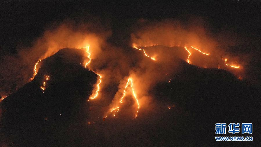 (国际)(1)巴西森林火灾数量激增 逾半数发生在亚马孙雨林