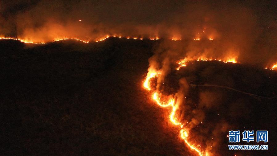 (国际)(4)巴西森林火灾数量激增 逾半数发生在亚马孙雨林