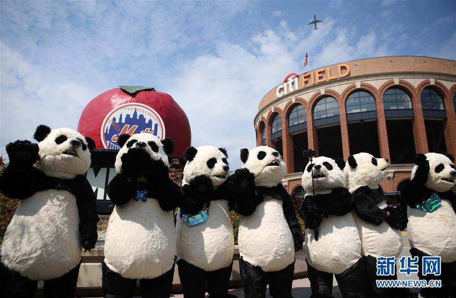 (国际)(4)中国花灯将登陆纽约花旗球场 点亮纽约新年