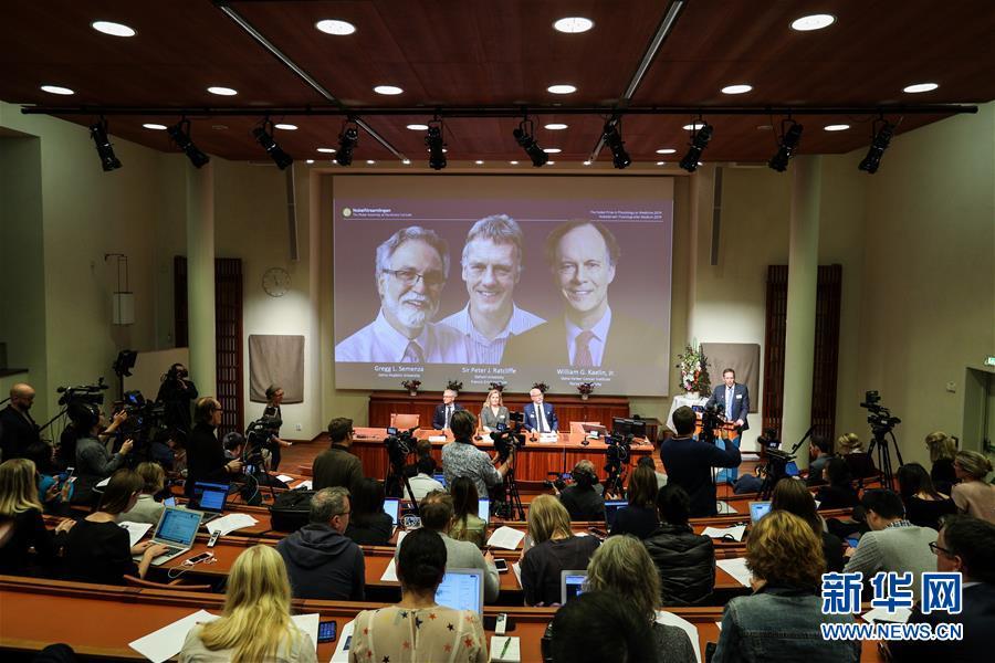 (國際)(3)三名科學家分享2019年諾貝爾生理學或醫學獎