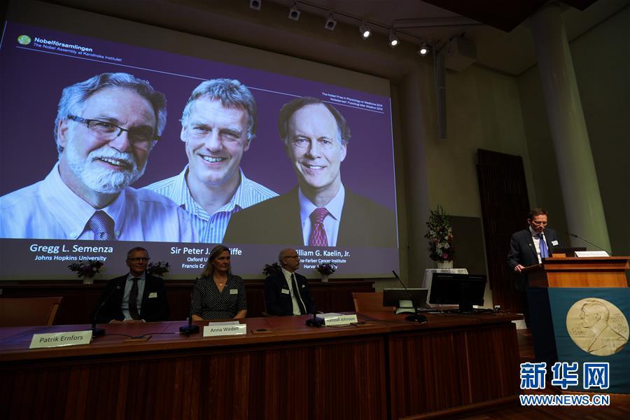 (國際)(5)三名科學家分享2019年諾貝爾生理學或醫學獎
