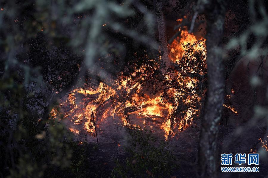 (国际)(2)美国加州北部索诺马县发生山火