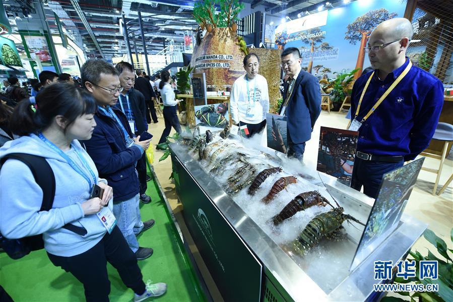 (新华全媒头条·图文互动)(2)中国市场 世界共享——进博会勾勒共赢画卷