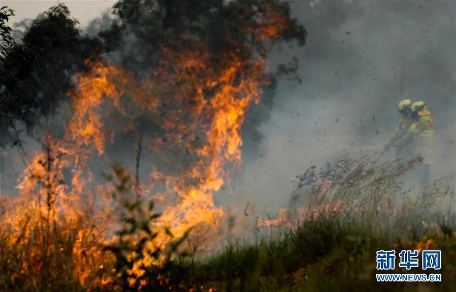 (國際)(2)澳新南威爾士州因林火進入緊急狀態