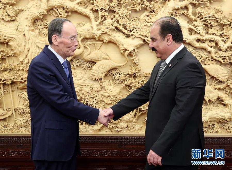 王岐山会见叙利亚复兴党代表团