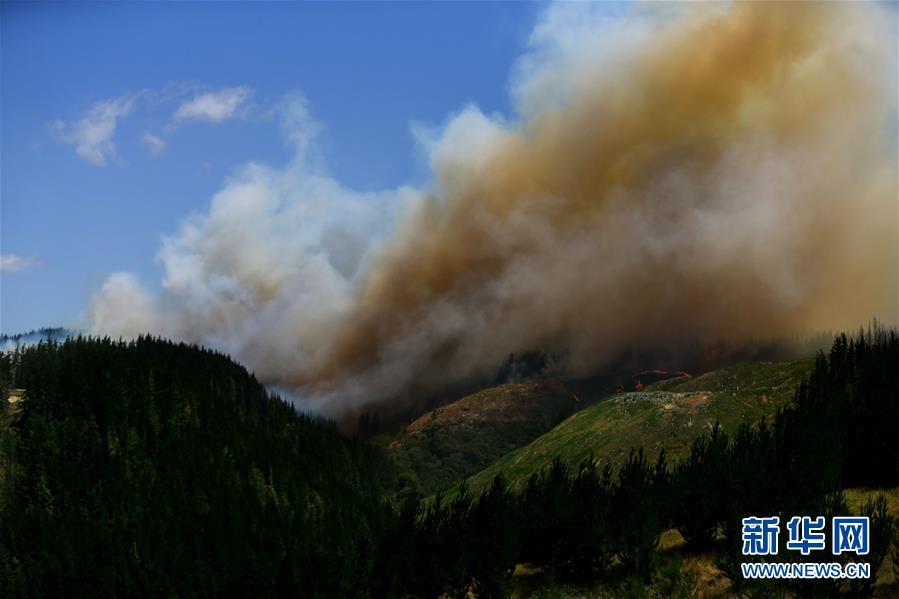 (國際)(1)新西蘭北島突發森林大火