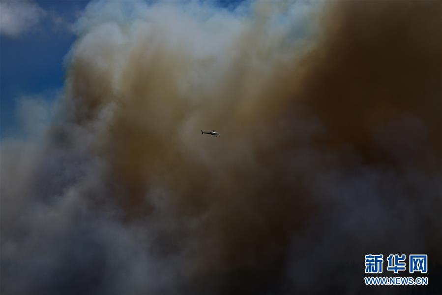 (國際)(2)新西蘭北島突發森林大火