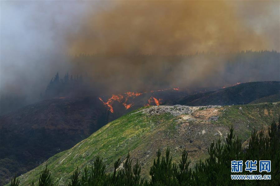 (國際)(3)新西蘭北島突發森林大火