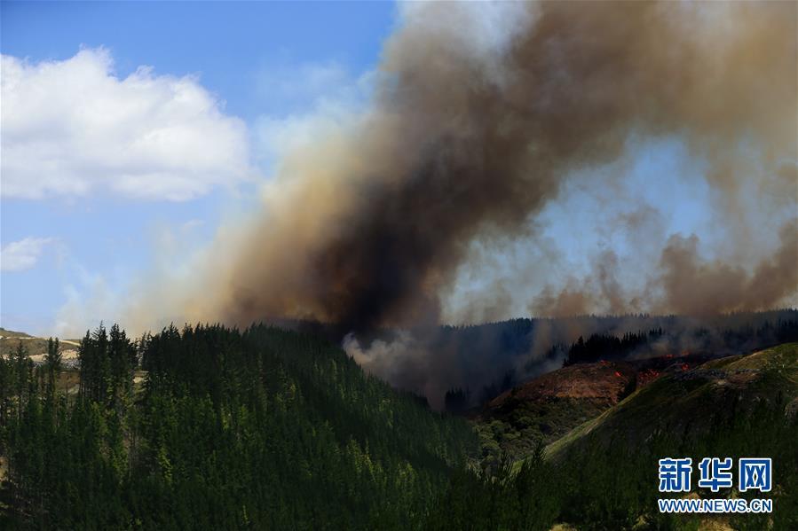 (國際)(4)新西蘭北島突發森林大火