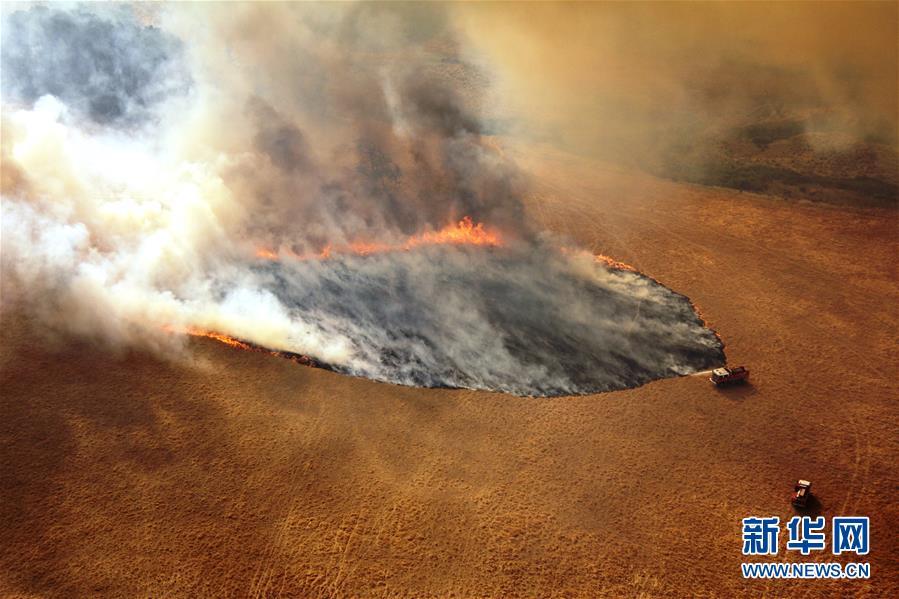 (国际·图文互动)(8)综述:澳大利亚林火肆虐 将设新机构救灾