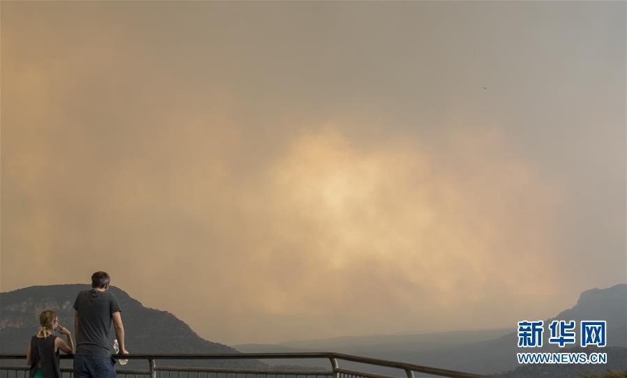 (国际·图文互动)(1)综述:澳大利亚林火肆虐 将设新机构救灾