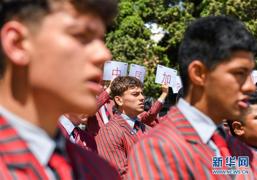 """(国际)(1)新西兰惠灵顿斯科特中学学生跳哈卡战舞为中国""""战疫""""祈福"""