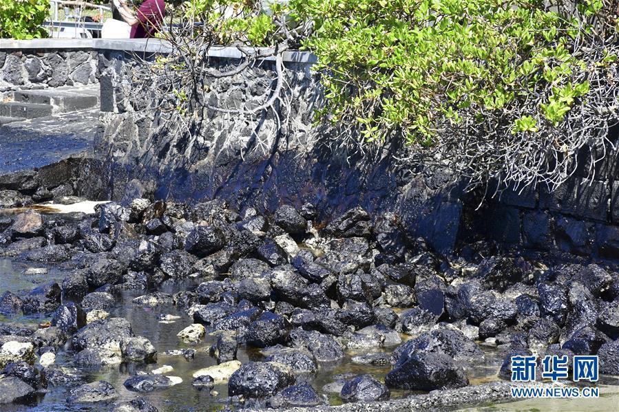 (國際)(1)毛裏求斯總理稱擱淺貨船已停止漏油 但船體有進一步破裂風險