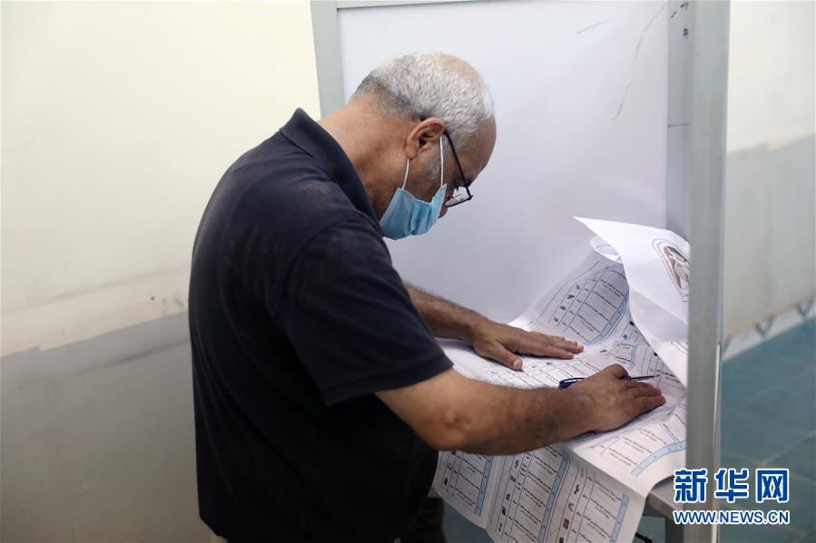 (國際)(6)埃及舉行議會上院選舉
