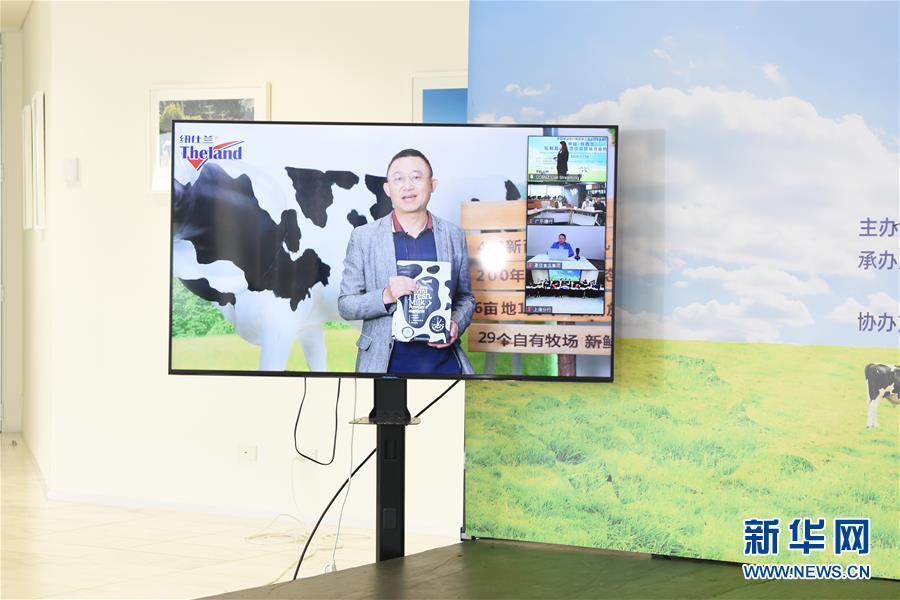 (国际·图文互动)(2)中国-新西兰乳制品商贸洽谈会签约金额超12亿元