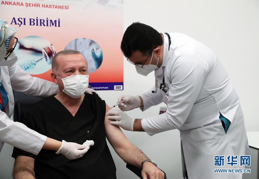 土耳其总统接种中国新冠疫苗