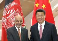 習近平會見阿富汗總統