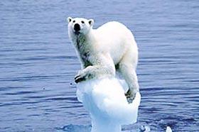 """發達國家欠了多少""""氣候債"""""""