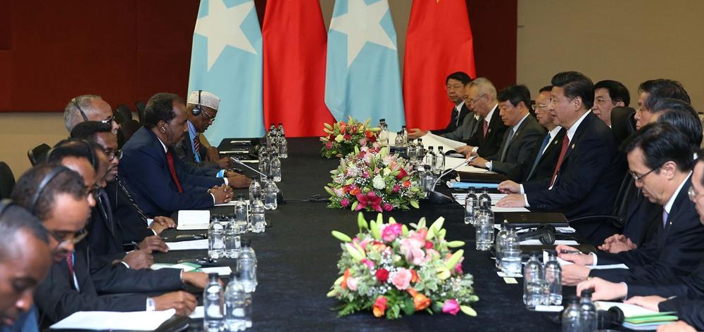 習近平會見索馬裏總統馬哈茂德