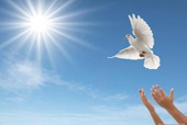 淩德權:和平發展是中國的戰略抉擇和國策