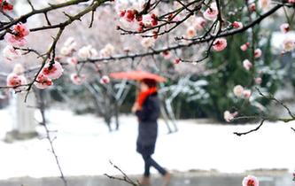 全國多地迎來降雪天氣