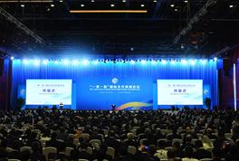 杨洁篪:国际社会参与