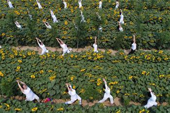 向陽花海練瑜伽