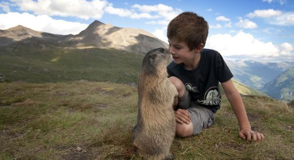 国际友谊日:被萌娃和小动物的跨界友情暖化了