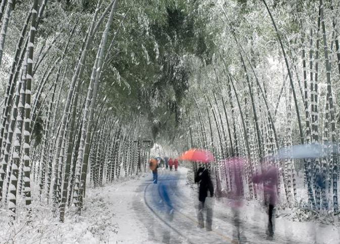 江蘇南山竹海雪後銀裝素裹現北國風光