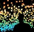 悉尼燈光音樂節將開幕
