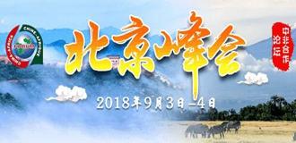 2018中非合作論壇北京峰會