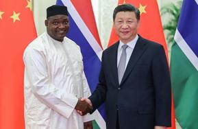 習近平會見岡比亞總統