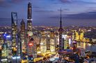 收獲滿滿 點讚中國——參加進博會國際展商談展會成果