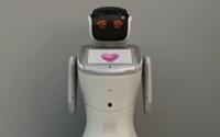西班牙 中國機器人走進課堂 與小學生做朋友