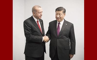 習近平會見土耳其總統