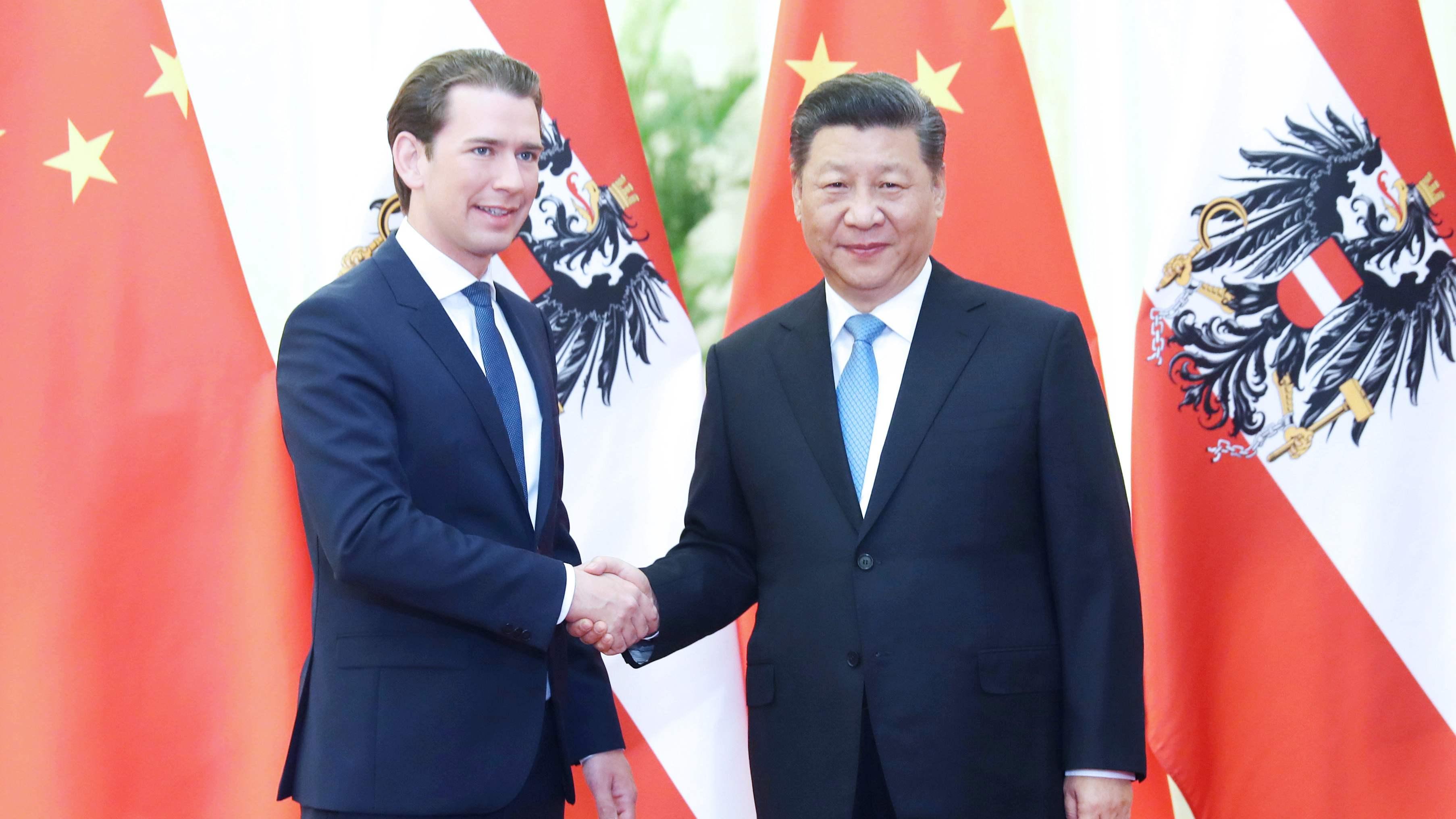 习近平会见奥地利总理库尔茨
