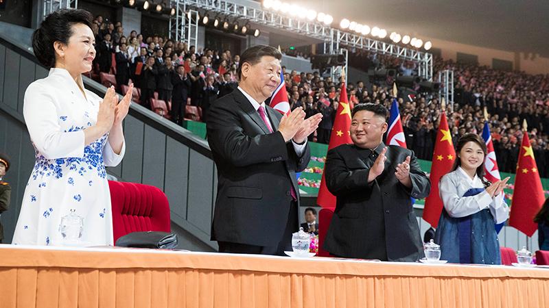 習近平和彭麗媛觀看朝鮮大型團體操和藝術演出