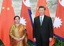 習近平同尼泊爾總統班達裏舉行會談(2019年4月29日)
