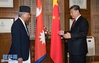 習近平會見尼泊爾大會黨主席德烏帕